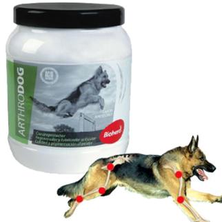 Arthrodog 500 Gr Regenerador y Reparador Cartílagos Perros